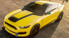 Ford Mustang Shelby GT350 Ole Yeller